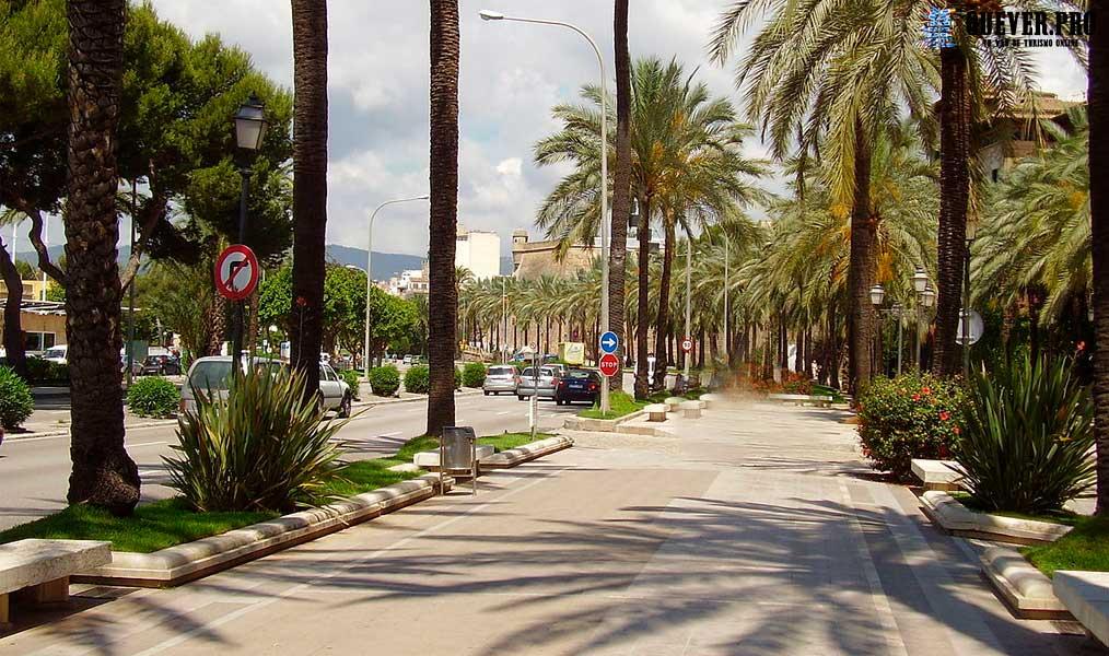 Avenida de Gabriel Roca o Paseo Marítimo Palmas de mallorca