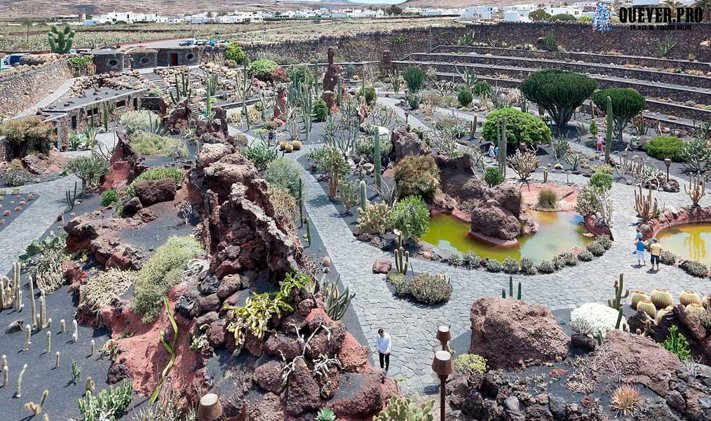 El Jardín de Cactus Lanzarote