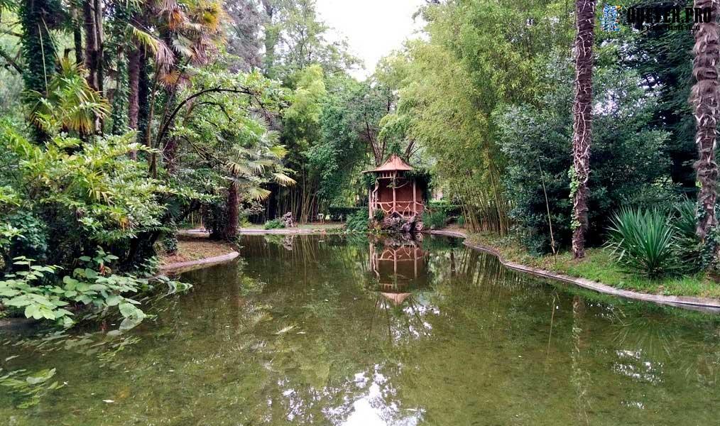 Parque Natural Señorio del Bertiz Navarra
