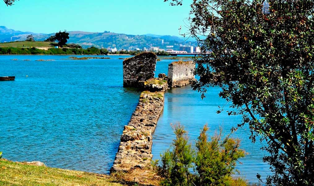 reserva natural de las marismas santoña